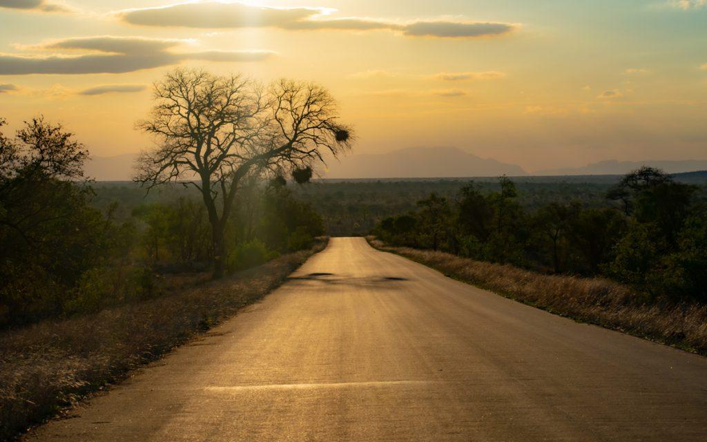 Coucher de soleil au parc Kruger