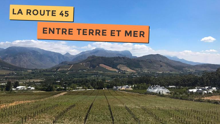 Vue magnifique sur la route des vins près de Cape Town