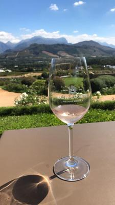 Dégustation de vin dans les vignes de Cape Town,