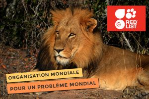 photo de IUCN pour la conservation mondiale