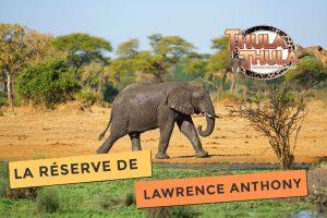 Photo de Thula Thula la réserve mythique de Lawrence Anthony