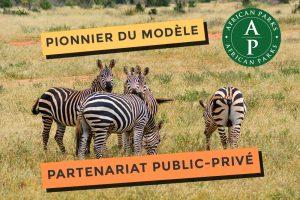 African park ponnier du modèle Partenariat Public-Privé