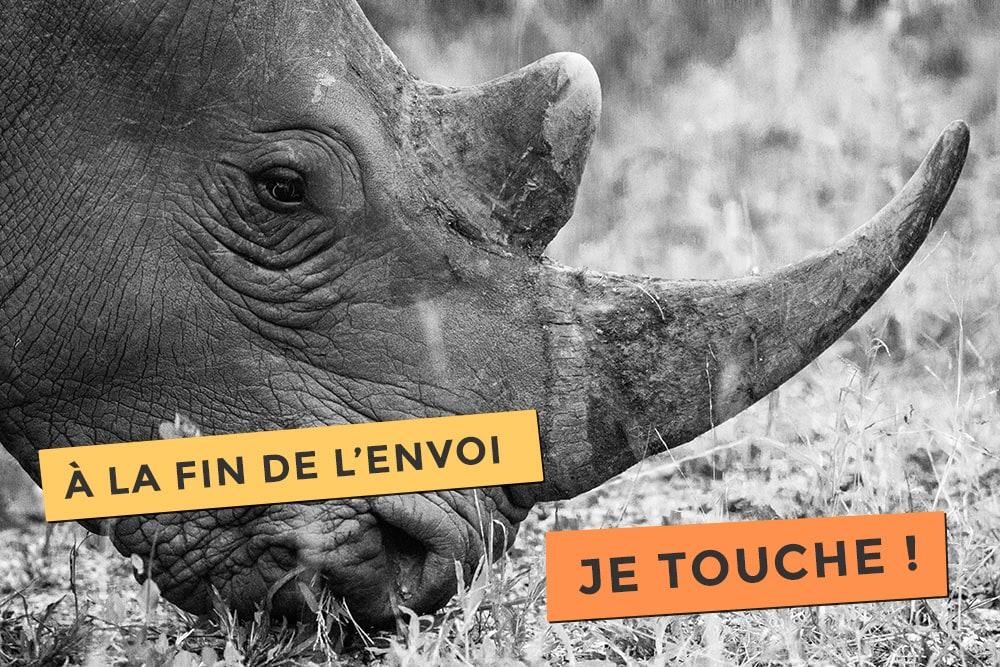 Photo d'un rhinocéros l'escrimeur de l'extrême